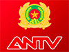 ANTV live